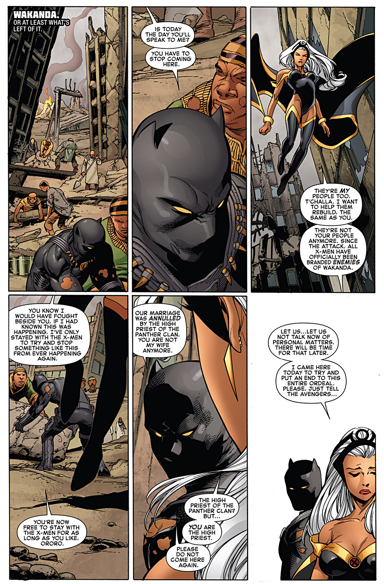black panther annuls his marriage to storm