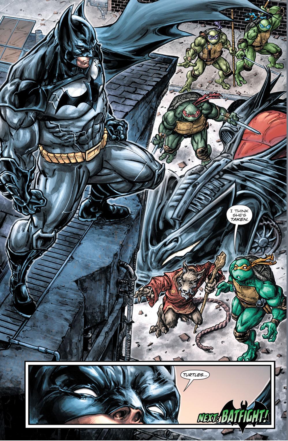 batman meets the teenage mutant ninja turtles