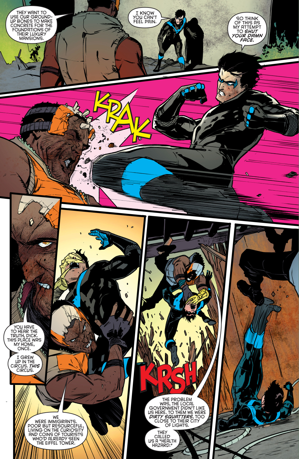 nightwing-vs-raptor