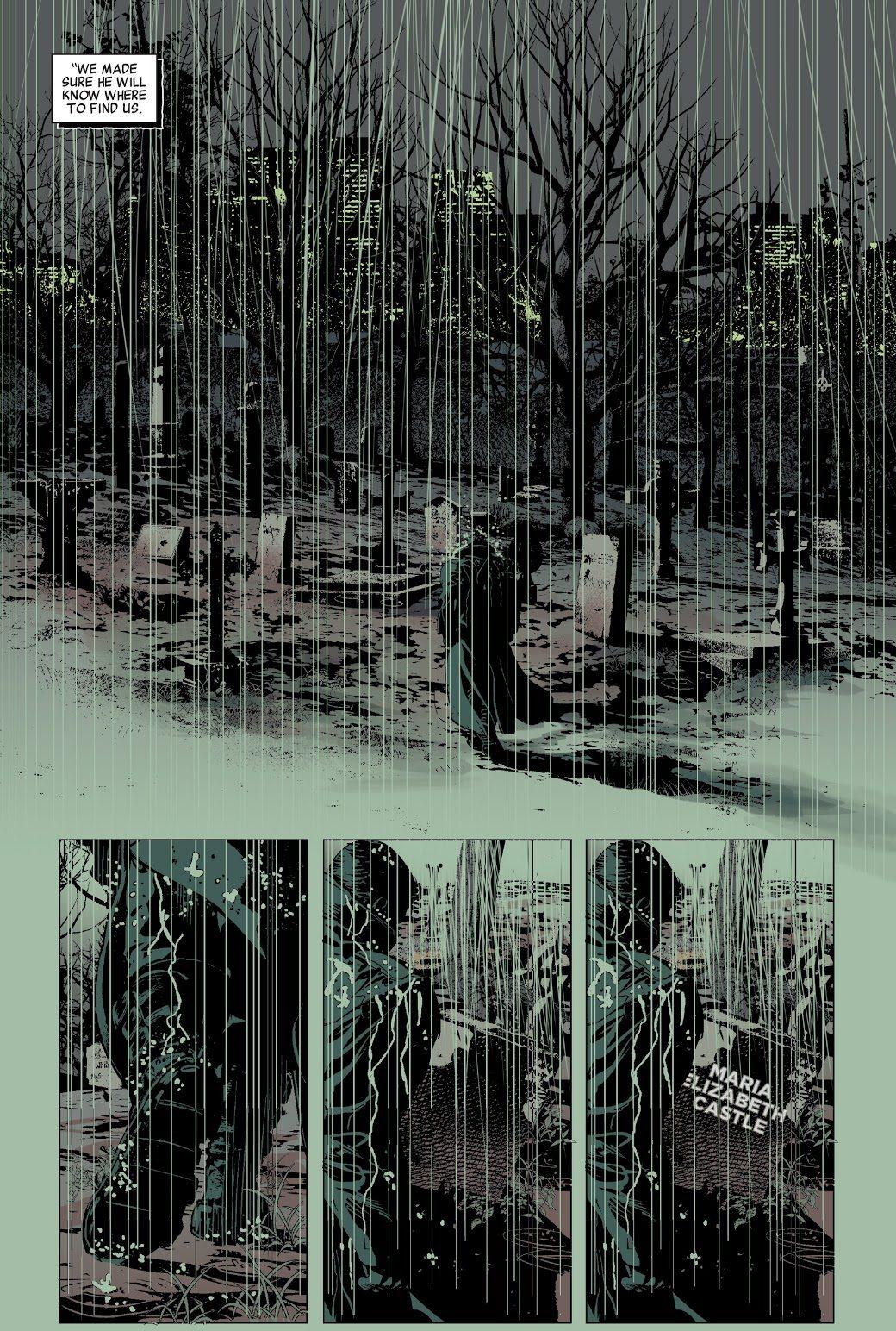 The Punisher (Savage Avengers #1)